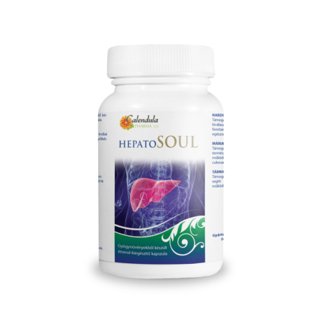 hepatosoul